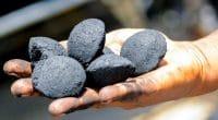 AFRIQUE: Agricycle obtient 2,4 M$ pour recycler les déchets alimentaires et agricoles©Agricycle Global