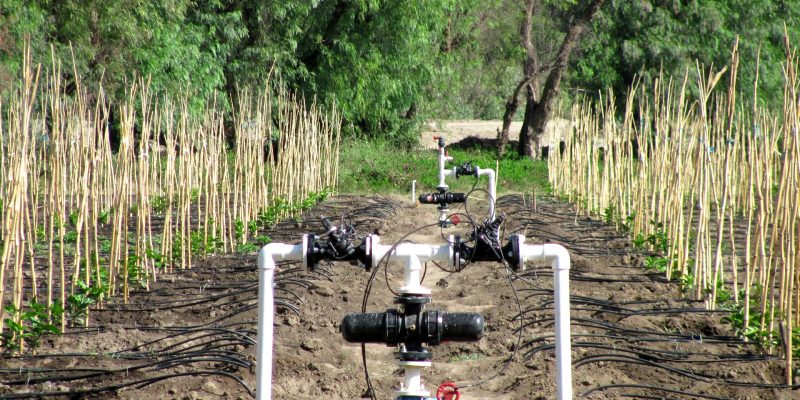 ETHIOPIA: Israel's Water Ways to supply modern irrigation systems©Irri-Al-Tal