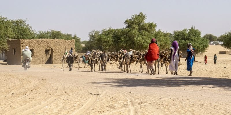AFRICA: The continent will have 105 million climate migrants by 2050©Torsten Pursche/Shutterstock