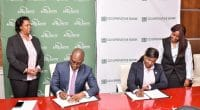 KENYA: Co-operative Bank secures $7.5m guarantee for green SME finance©AGF/Shutterstock