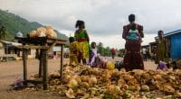GHANA: A new solid waste recycling initiative in Accra©Nejah/Shutterstock