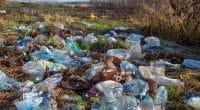 LIBERIA : création d'un centre pour la collecte des données sur les déchets à Monrovia©alvant/Shutterstock