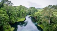 AFRIQUE : préserver le bassin du Congo, l'une des résolutions du congrès de l'UICN©antoinee/Shutterstock