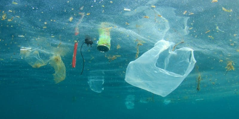 RWANDA : Kigali propose un accord international de lutte contre le plastique©Rich Carey/Shutterstock