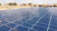 AFRIQUE : un fonds d'urgence (Covid-19) de 80 M$ finance 90 fournisseurs d'off-grids © Sebastian Noethlichs/Shutterstock