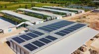 GHANA-SIERRA LEONE : Eiffel soutient le solaire à usage productif avec un prêt de 3 M€ © NavinTar/Shutterstock