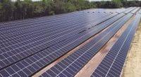 SAHEL : le FVC investit 150 M$ dans l'initiative «Desert to Power» de la BAD ©wadstock/Shutterstock