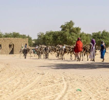 MALI: thanks to Enabel, Vergnet and Seeba provide water to Koulikoro ©Jen Watson/Shutterstock