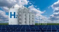 AFRIQUE DU SUD : Sasol va produire et exporter l'hydrogène vert à partir de Boegoebaai© Scharfsinn/Shutterstock