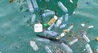 AFRIQUE DU NORD : en 2022, BeMed financera des microprojets de gestion du plastique©Mr.anaked/Shutterstock