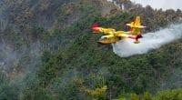 MAROC : Rabat renforce sa flotte de Canadair pour lutter contre les feux de forêt©Arcansel/Shutterstock