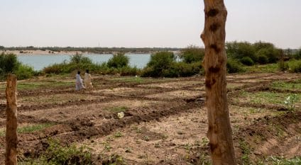 SUDAN: New water resources management strategy takes effect©geogif/Shutterstock