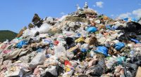 CAMEROON: when corruption sabotages the ban on plastic packaging ©kanvag/Shutterstock