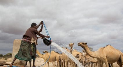 SOMALIA: New strategy to improve water resources management©Faid Elgziry/Shutterstock