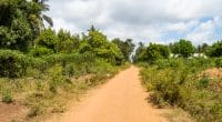 BURKINA FASO: AIMF supports the rehabilitation of Ouagadougou's green belt©Philou1000/Shutterstock