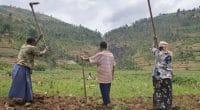 AFRIQUE CENTRALE: les députés prônent les modes ancestraux de résilience au climat©giulio napolitano/Shutterstock