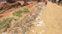KENYA : les promesses d'un nouveau pacte sur la gestion des déchets plastiques ©Authentic travel/Shutterstock
