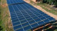 OUGANDA-SIERRA LEONE : la FMO et REPP financent les mini-grids solaires de WIPP ©Chris Kanani